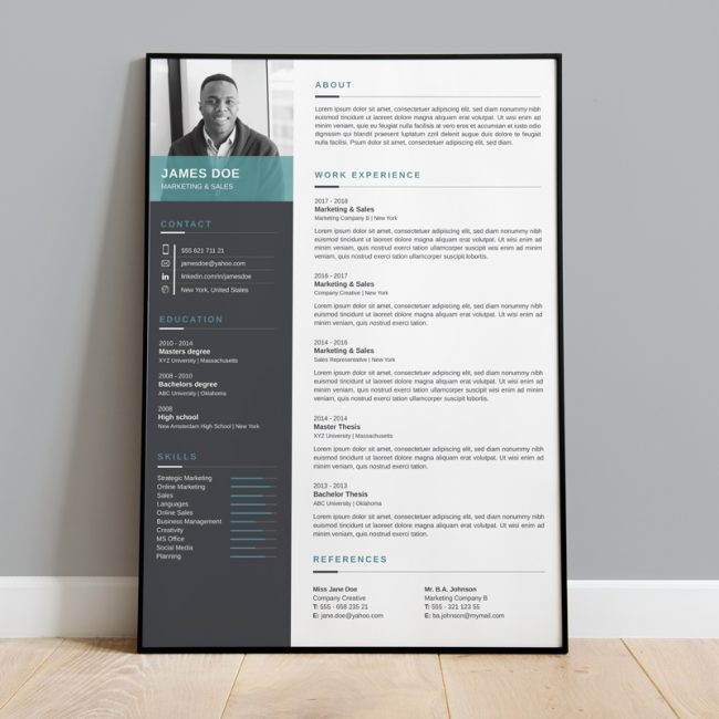 CV - Professional Blue