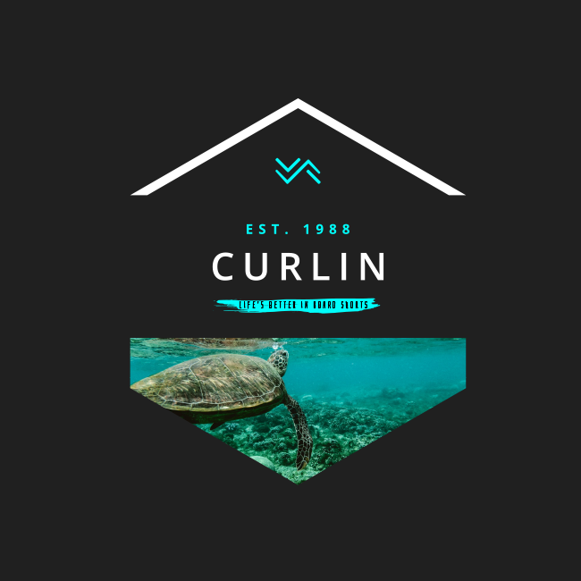 Sea turtle – Curlin T-shirt